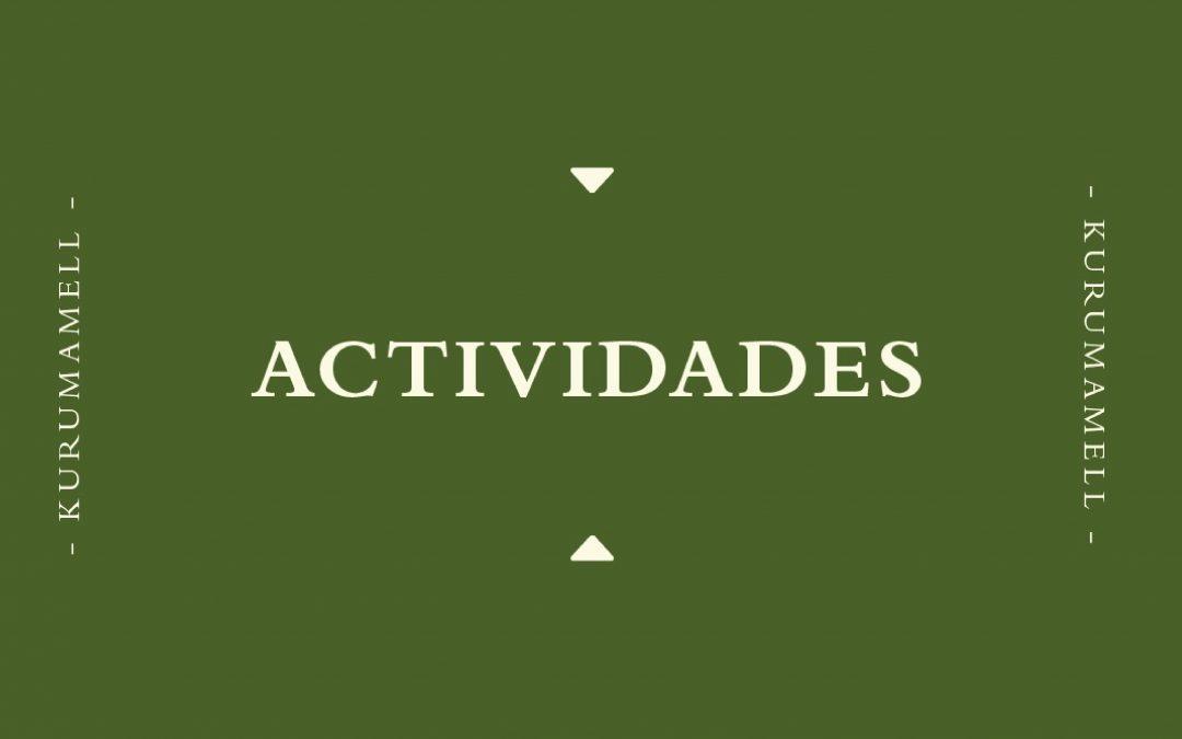 Actividades en Cuarentena